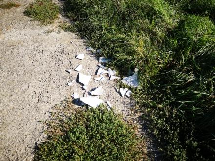 VENARIA - «Puliamo il Don Mosso»: domattina si toglieranno cartacce e rifiuti di ogni tipo