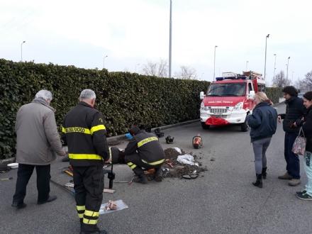 CASELLE - Tre cani incastrati in un tubo rischiano di morire: salvati dai vigili del fuoco - FOTO