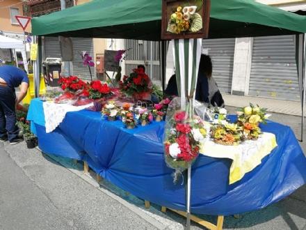 BORGARO - Domani la Fiera delle Rose: tutto il programma