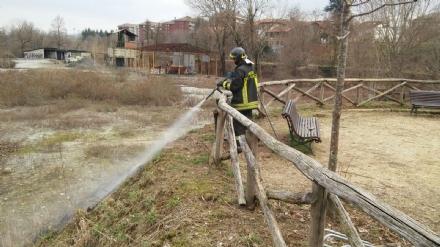 VENARIA - Lanciano petardi per gioco e provocano un incendio nel parco