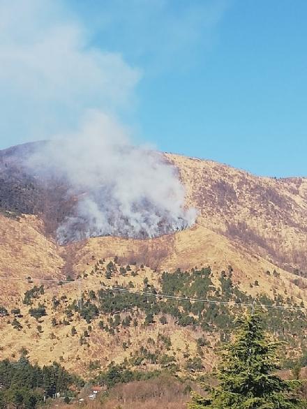 GIVOLETTO - Nuovo incendio boschivo: gli elicotteri già in azione