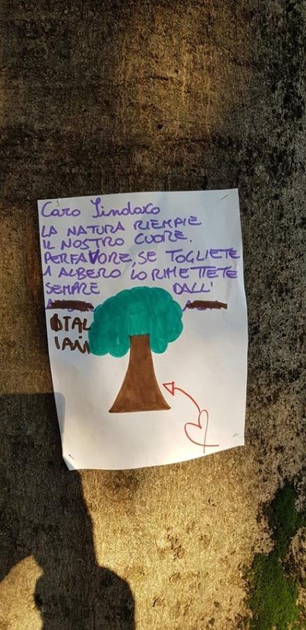 VENARIA - Cartelli e disegni per dire «no» allabbattimento degli alberi in via Amati