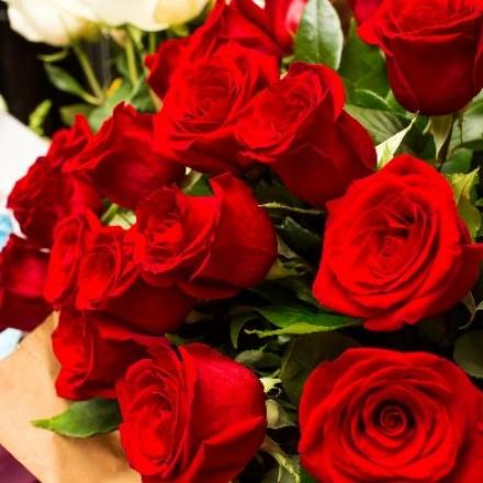 VENARIA - Vende abusivamente le rose in corso Matteotti: maxi multa da 5mila euro