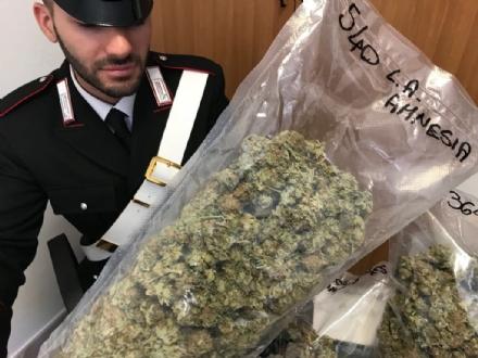 ALPIGNANO - Pensionato di 71 anni fa da «staffetta» nella consegna della droga: arrestato
