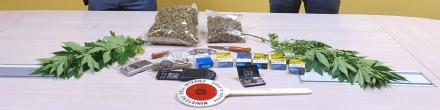 RIVOLI - Marijuana in auto e in casa: due rivolesi di 27 e 39 anni finiscono in manette