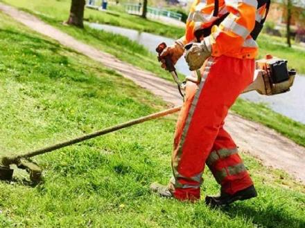 RIVOLI - Il Comune cerca 8 persone disoccupate per manutenere il verde e monitorare edifici