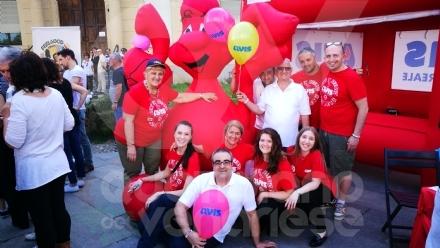 VENARIA - Domenica 21 nuova donazione di sangue dellAvis
