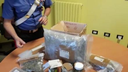 COLLEGNO - Una casa trasformata in «centrale dello spaccio»: arrestato un 24enne