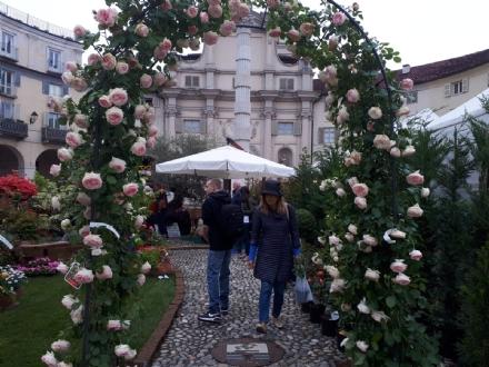 VENARIA - Festa delle Rose e Fragranzia 2018: neanche la pioggia evita il successo - LE FOTO