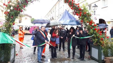 VENARIA - «Festa delle Rose»: un successo a metà per colpa della pioggia