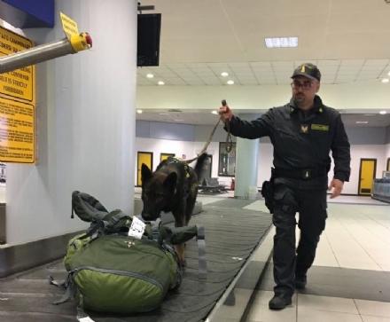 CASELLE - Foglie di cocaina nella valigia: «Le utilizzo per preparmi le tisane», arrestato