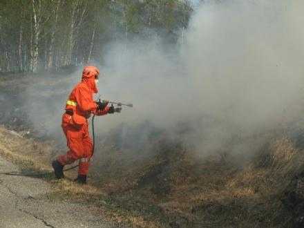 VAL DELLA TORRE - Scoppia un altro incendio: boschi in fiamme e caccia al piromane