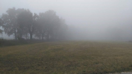 VENARIA - Revocata lordinanza anti smog: via libera ai veicoli a diesel