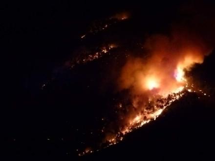 VAL DELLA TORRE - Incendio boschivo. Il sindaco: «la situazione per ora è sotto controllo»
