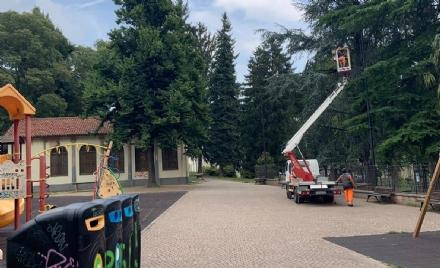 RIVOLI - Più sicurezza nella zona dei giardini Turati: sostituite le lampade non funzionanti