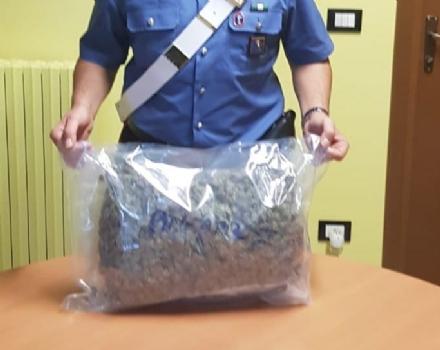 ALPIGNANO - Oltre un chilo di marijuana sul sedile posteriore dellauto: 22enne in manette