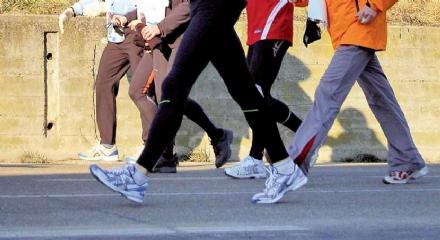 COLLEGNO - Al parco Generale Carlo Alberto Dalla Chiesa partono i corsi di fitwalking
