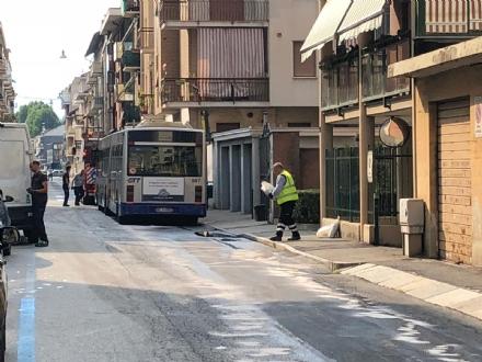 VENARIA - Autobus Gtt perde gasolio in mezzo alla strada: traffico bloccato e passeggeri a piedi - FOTO
