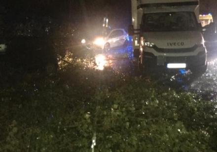 MALTEMPO - Furgone colpito da un albero in tangenziale: donna ferita. Forti danni in diverse cittadine