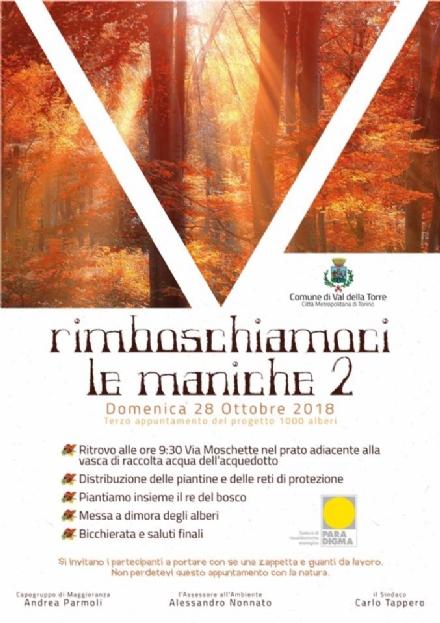 VAL DELLA TORRE - «Rimboschiamoci le maniche 2»: quando un paese ridà vita al bosco