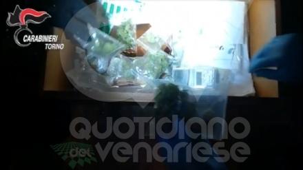 RIVOLI - Si presenta dai carabinieri per una denuncia e finisce arrestato per possesso di droga