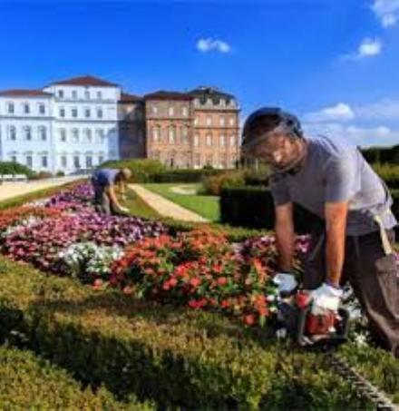 VENARIA - Alla Reggia un corso per diventare giardiniere darte e parchi storici