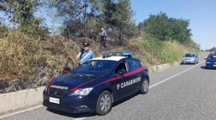ALPIGNANO - «Mi dava fastidio lerba alta»: piromane appicca un incendio. Arrestato dai carabinieri