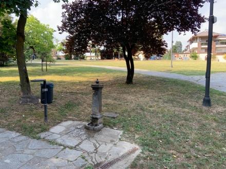 RIVOLI - Nuovo look per le aree verdi comunali: pulizia e taglio dellerba
