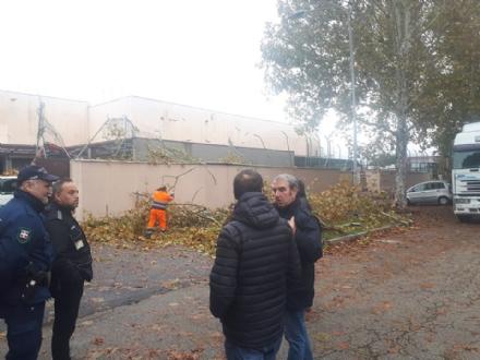 VENARIA - MALTEMPO: Parte la conta dei danni. Sopralluogo del sindaco in tutta la città