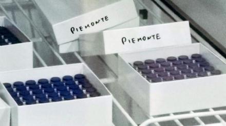 VACCINO ANTI COVID - Già somministrate 12.629 dosi: il 30.9% di quelle consegnate al Piemonte