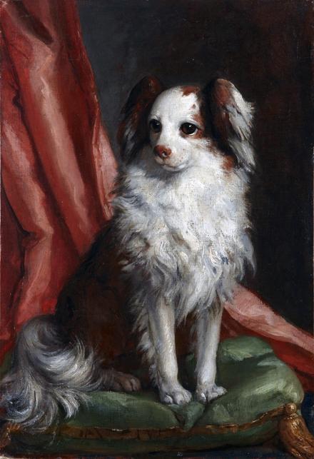 VENARIA - Alla Reggia la mostra «Cani in posa» prorogata fino a maggio