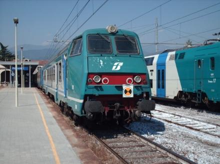 ALPIGNANO - Il treno della Sfm3 travolge e uccide un capriolo: traffico in tilt per unora