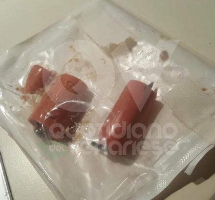 MAPPANO - Bocconi killer nellarea cani di via Da Vinci: pezzi di wurstel con dentro dei chiodi