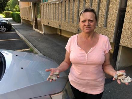 COLLEGNO - Crolla un cornicione alle case Atc di viale Partigiani: colpita una macchina