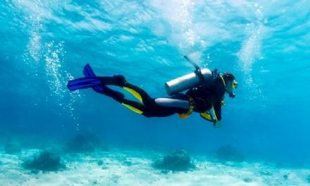 ALPIGNANO - Volontaria della Croce Verde si perde nel Mar Ligure durante una immersione