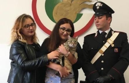 TORINO-GRUGLIASCO - Chiede il riscatto per un gattino: arrestata dai carabinieri di Grugliasco