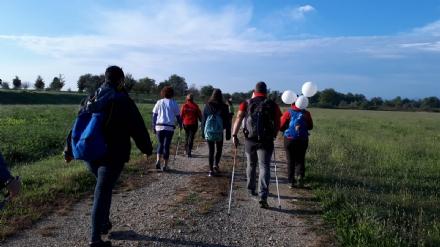 VENARIA - Trecentocinquanta appassionati per il raduno di Nordic Walking - LE FOTO