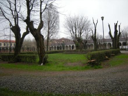 COLLEGNO - Una petizione per chiedere al sindaco un campo da tennis al parco Certosa