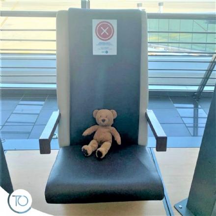 CASELLE - Orsetto dimenticato in sala di attesa: laeroporto lancia lappello tramite i social