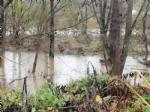 MALTEMPO - Evacuate alcune famiglie a Pianezza. Straripamenti di fiumi e strade chiuse - immagine 10