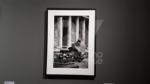 VENARIA - Alla Reggia le foto che hanno fatto la storia di Elliot Erwitt - immagine 10