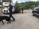 CAMPO NOMADI - Maxi blitz dei carabinieri contro roghi tossici e furti: 14 arresti - FOTO E VIDEO - immagine 11