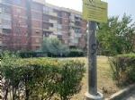 RIVOLI - Nuovo look per le aree verdi comunali: pulizia e taglio dellerba - immagine 11