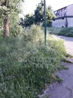 VENARIA - Erba alta, scarsa illuminazione e una materna con problemi... - immagine 12