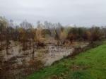MALTEMPO - Evacuate alcune famiglie a Pianezza. Straripamenti di fiumi e strade chiuse - immagine 12