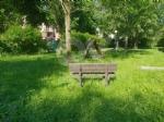 VENARIA - Erba alta, scarsa illuminazione e una materna con problemi... - immagine 13