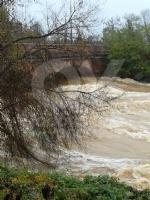 MALTEMPO - Evacuate alcune famiglie a Pianezza. Straripamenti di fiumi e strade chiuse - immagine 13