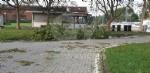 VENARIA-BORGARO-CASELLE-MAPPANO - Maltempo: tetti scoperchiati e alberi abbattuti - immagine 23