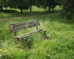 VENARIA - Il degrado di Corona Verde: tra atti vandalici, scarsa manutenzione e costruzioni mai finite - immagine 13