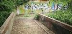 VENARIA - Il degrado di Corona Verde: tra atti vandalici, scarsa manutenzione e costruzioni mai finite - immagine 17